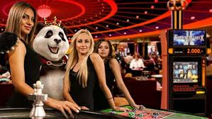 img - Royal Panda - Live Casino